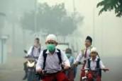 FPKB DPRD Riau Minta Penanganan Khusus Kabut Asap